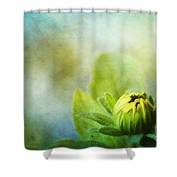 New Beginnings Shower Curtain by Darren Fisher