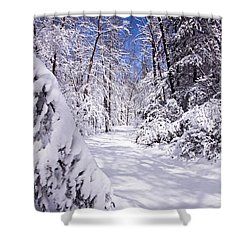 No Footprints Shower Curtain by Rob Travis