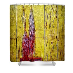 Old Brooms Shower Curtain by Judi Bagwell