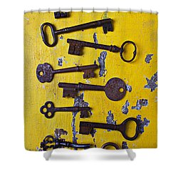 Old Skeleton Keys Shower Curtain by Garry Gay