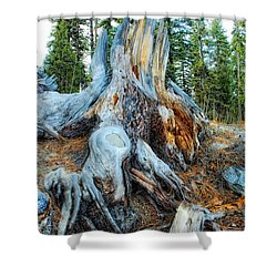 Old Warrior Shower Curtain by Donna Blackhall