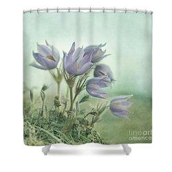 On The Crocus Bluff Shower Curtain by Priska Wettstein