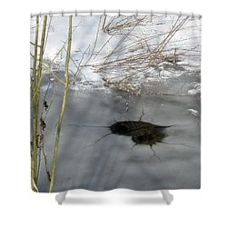 On The River. Heart In Ice 02 Shower Curtain by Ausra Huntington nee Paulauskaite