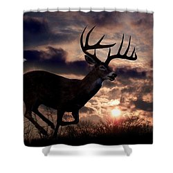 On The Run Shower Curtain by Bill Stephens