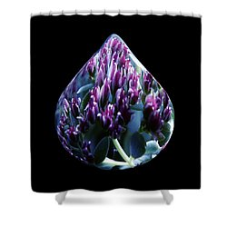 One Drop Of Water Shower Curtain by Barbara St Jean