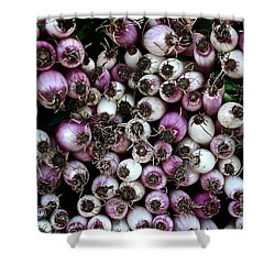 Onion Power Shower Curtain by Susan Herber