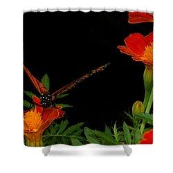 Orange On Orange Shower Curtain by Lydia Holly