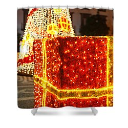 Outdoor Christmas Decorations Shower Curtain by Gaspar Avila