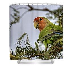 Over My Shoulder  Shower Curtain by Saija  Lehtonen