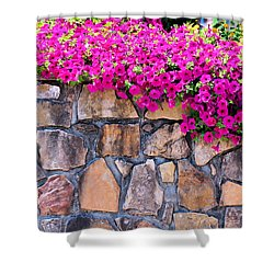Over The Wall Shower Curtain by Jan Amiss Photography