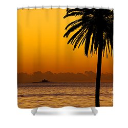 Palm Tree Sunset Shower Curtain by Carlos Caetano