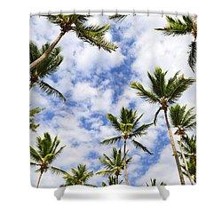 Palm Trees Shower Curtain by Elena Elisseeva