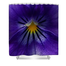 Pansy Abstract Shower Curtain by Lisa Phillips