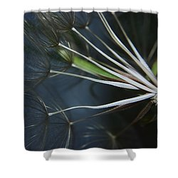 Parachute Seeds  Shower Curtain by Jeff Swan