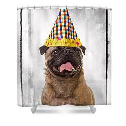 Party Animal Shower Curtain by Edward Fielding