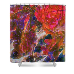Patterns In Scarlet Shower Curtain by Judi Bagwell