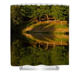 Patterns Of Nature Shower Curtain by Karol Livote