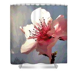 Peach Blossom Macro 2 Shower Curtain by Joyce Dickens