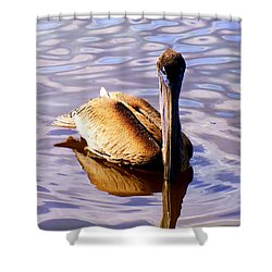 Pelican Puddles Shower Curtain by Karen Wiles