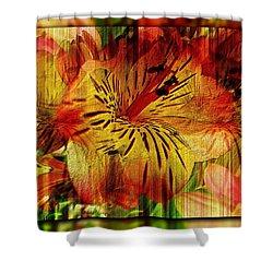 Petal Paradigm Shower Curtain by Tim Allen