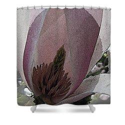 Petal Prose Shower Curtain by Tim Allen