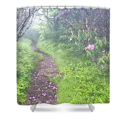 Petaled Path Shower Curtain by Rob Travis