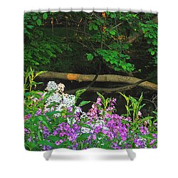 Phlox Along The Creek 7185 Shower Curtain by Michael Peychich