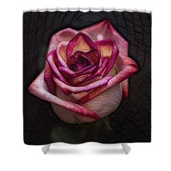 Picturesque Satin Rose Shower Curtain by Linda Tiepelman