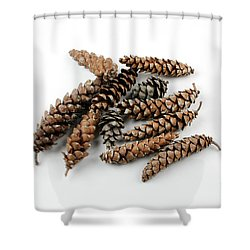 Pine Cones Shower Curtain by Photo Researchers, Inc.
