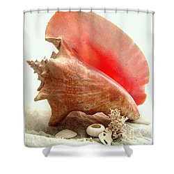 Pink Cong Shell Shower Curtain by Danielle  Parent