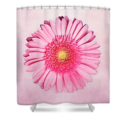 Pink Delight Shower Curtain by Tamyra Ayles