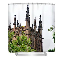 Pinnacles Of St. Mary's Cathedral - Sydney Shower Curtain by Kaye Menner