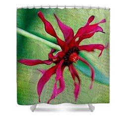Pinwheel Shower Curtain by Judi Bagwell