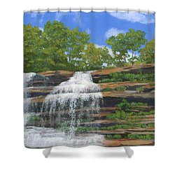Pixley Falls Shower Curtain by Lynne Reichhart
