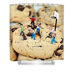 Playing Basketball On Cookies II Shower Curtain by Paul Ge