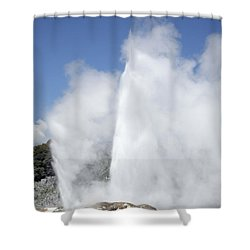 Pohutu And Prince Of Wales Feathers Shower Curtain by Richard Roscoe