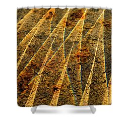 Points Of Light Shower Curtain by Susan Capuano