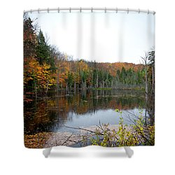 Pond On Limekiln Road In Inlet New York Shower Curtain by David Patterson
