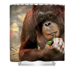 Pondering Shower Curtain by Mark Papke