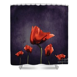 Poppies Fun 02b Shower Curtain by Variance Collections
