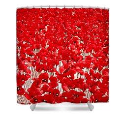 Poppy Meadow ... Shower Curtain by Juergen Weiss