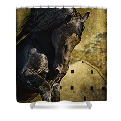 Power House Horse D1496 Shower Curtain by Wes and Dotty Weber