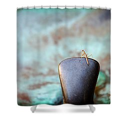 Praying For Water 2 Shower Curtain by Andee Design