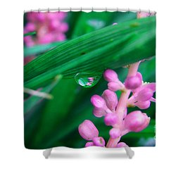 Pretty In Pink  Shower Curtain by Peggy  Franz