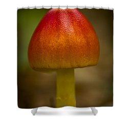 Pretty Wild Thing Shower Curtain by Kim Henderson