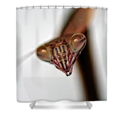 Preying Shower Curtain by Lois Bryan