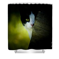 Privacy Please Shower Curtain by Kim Henderson