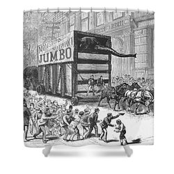 P.t. Barnum/jumbo Shower Curtain by Granger