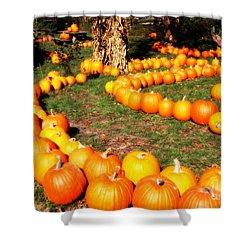 Pumpkin Patch Path Shower Curtain by Carol Groenen