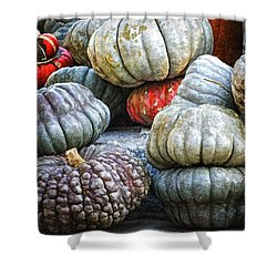 Pumpkin Pile II Shower Curtain by Joan Carroll